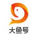 大鱼号 自媒体平台手机软件app