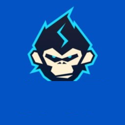 大猩猩加速器