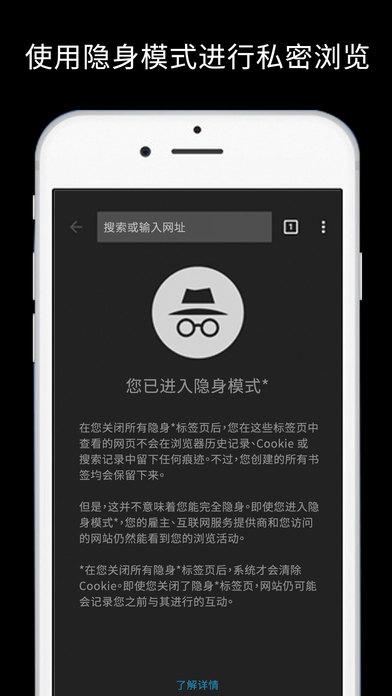 谷歌浏览器 中文版手机软件app截图