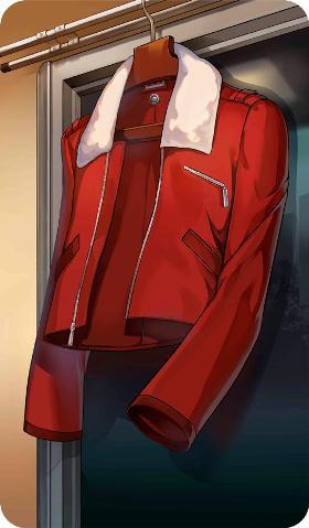 《命运冠位指定》红色套衫礼装图鉴