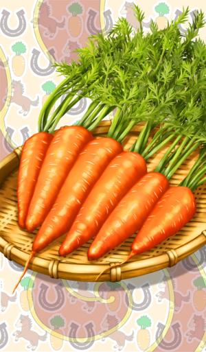 《命运冠位指定》最棒的胡萝卜礼装图鉴