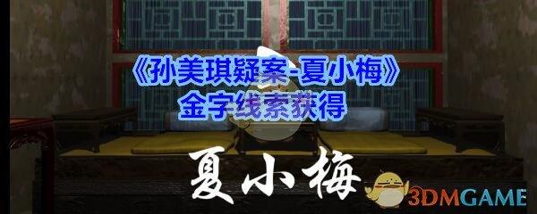 《孙美琪疑案-夏小梅》金字线索获得