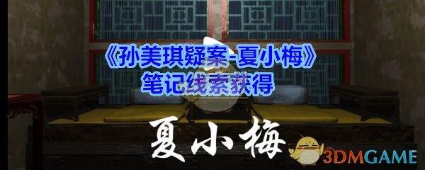 《孙美琪疑案-夏小梅》笔记线索获得