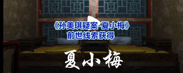 《孙美琪疑案-夏小梅》前世线索获得