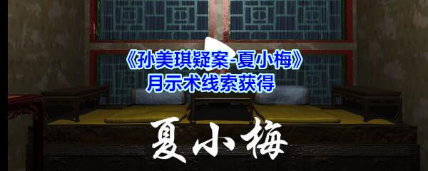 《孙美琪疑案-夏小梅》月示术线索获得