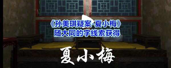 《孙美琪疑案-夏小梅》随大同的字线索获得