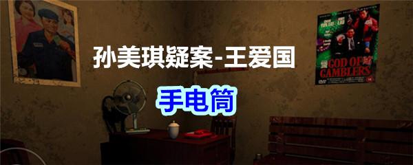 《孙美琪疑案-王爱国》手电筒线索获得
