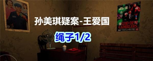 《孙美琪疑案-王爱国》绳子1/2线索获得