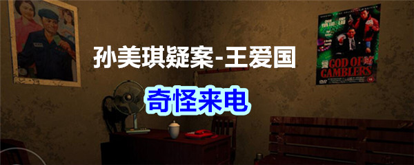 《孙美琪疑案-王爱国》奇怪来电线索获得