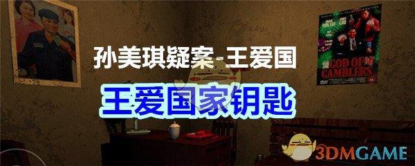 《孙美琪疑案-王爱国》王爱国家钥匙线索获得