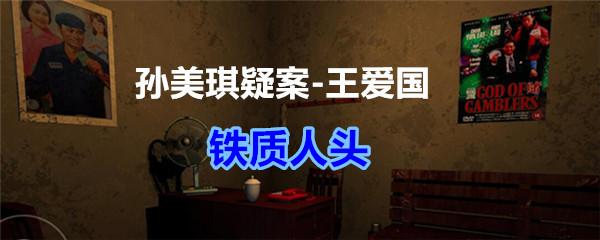 《孙美琪疑案-王爱国》铁质人头线索获得