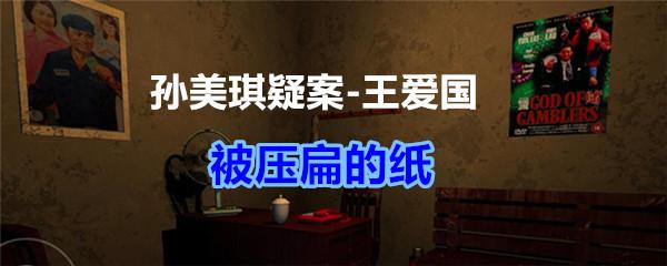 《孙美琪疑案-王爱国》被压扁的纸线索获得