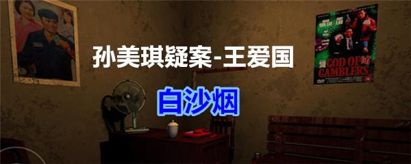 《孙美琪疑案-王爱国》白沙烟线索获得