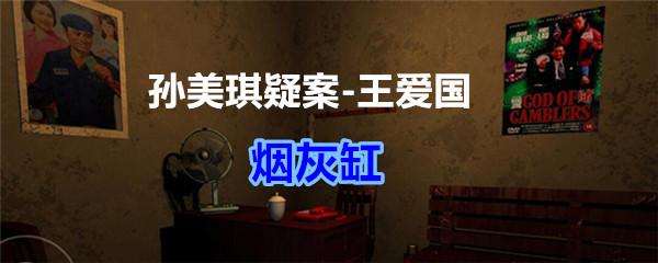 《孙美琪疑案-王爱国》烟灰缸线索获得
