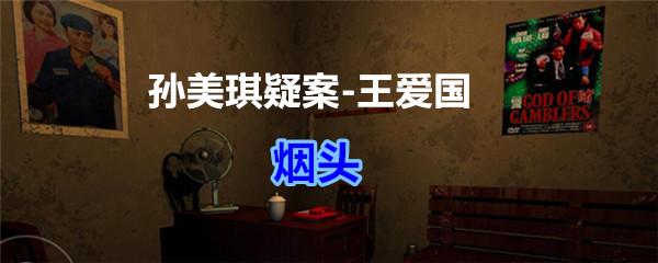 《孙美琪疑案-王爱国》烟头线索获得