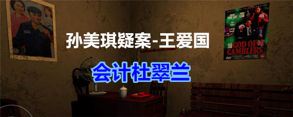 《孙美琪疑案-王爱国》会计杜翠兰线索获得