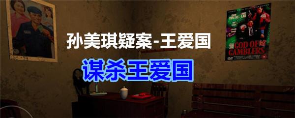 《孙美琪疑案-王爱国》谋杀王爱国线索获得