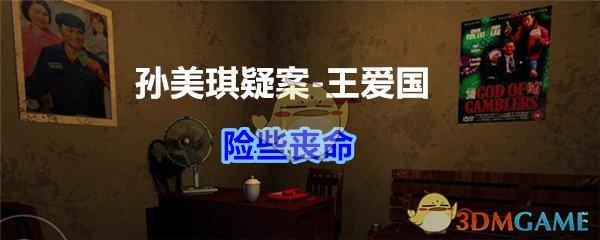 《孙美琪疑案-王爱国》险些丧命线索获得