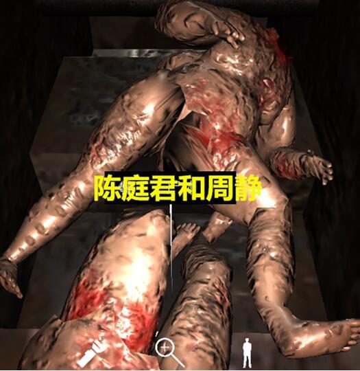 《孙美琪疑案-王爱国》陈庭君和周静线索获得