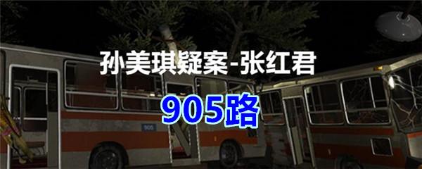 《孙美琪疑案-张红君》五级线索——905路