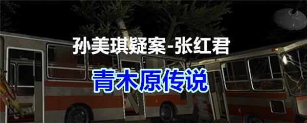 《孙美琪疑案-张红君》五级线索——青木原传说