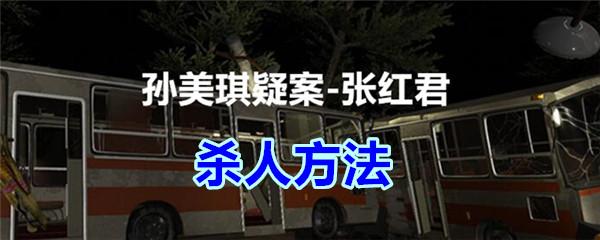 《孙美琪疑案-张红君》四级线索——杀人方法