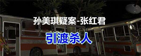 《孙美琪疑案-张红君》四级线索——引渡杀人
