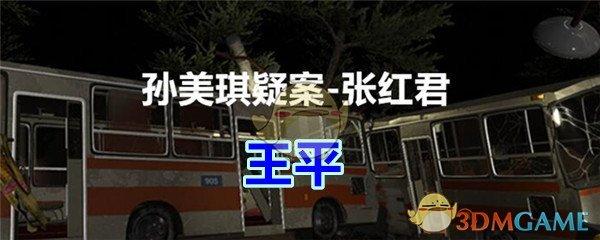 《孙美琪疑案-张红君》二级线索——王平