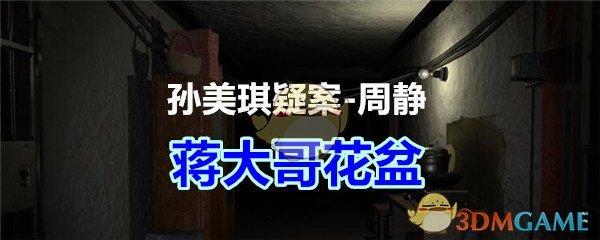 《孙美琪疑案-周静》五级线索——蒋大哥花盆