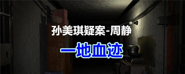 《孙美琪疑案-周静》五级线索——一地血迹