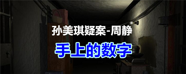 《孙美琪疑案-周静》四级线索——手上的数字