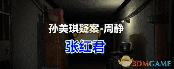 《孙美琪疑案-周静》三级线索——张红君