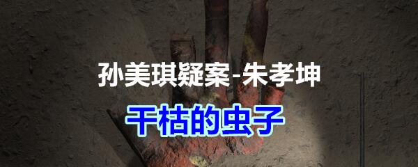 《孙美琪疑案-朱孝坤》五级线索——干枯的虫子