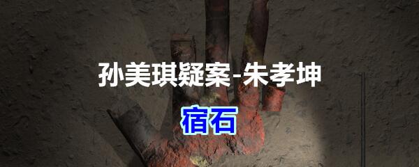 《孙美琪疑案-朱孝坤》五级线索——宿石