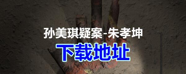 《孙美琪疑案-朱孝坤》下载地址分享