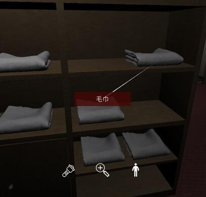 《孙美琪疑案-何氏汤泉》五级线索——毛巾