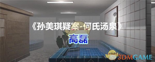 《孙美琪疑案-何氏汤泉》五级线索——高磊