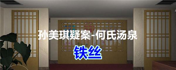 《孙美琪疑案-何氏汤泉》五级线索——铁丝