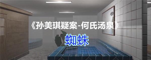 《孙美琪疑案-何氏汤泉》四级线索——蜘蛛