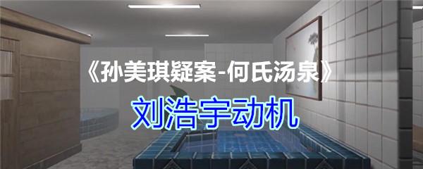《孙美琪疑案-何氏汤泉》四级线索——刘浩宇动机