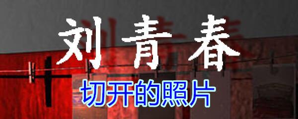 《孙美琪疑案-刘青春》五级线索——切开的照片