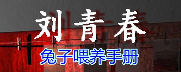 《孙美琪疑案-刘青春》五级线索——兔子喂养手册