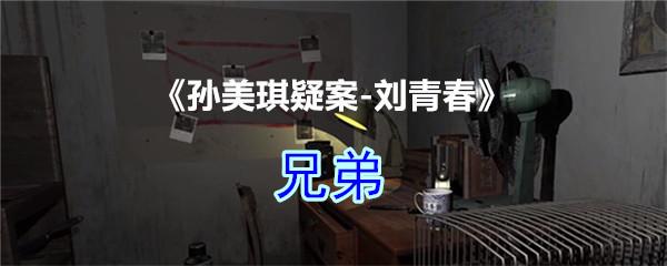 《孙美琪疑案-刘青春》四级线索——兄弟