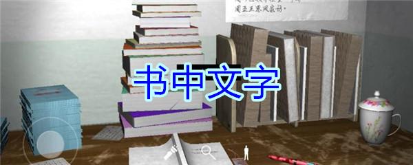 《孙美琪疑案-王思凤》五级线索——书中文字