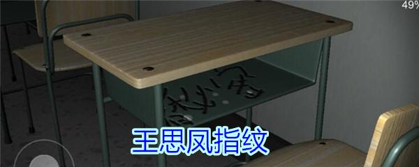 《孙美琪疑案-王思凤》五级线索——王思凤指纹