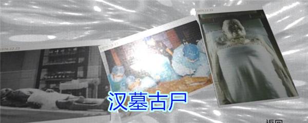 《孙美琪疑案-王思凤》五级线索——汉墓古尸