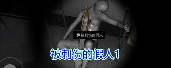 《孙美琪疑案-王思凤》四级线索——被刺伤的假人1