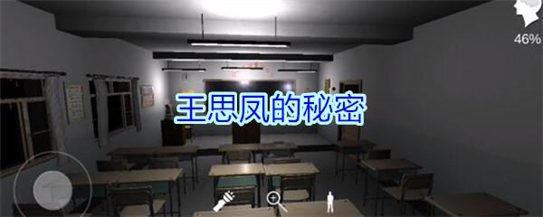 《孙美琪疑案-王思凤》四级线索——王思凤的秘密