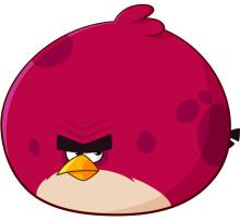 愤怒的小鸟2攻略