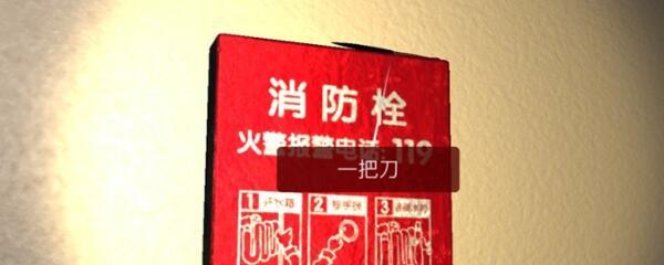 《孙美琪疑案-袁家宾馆》五级线索——一把刀